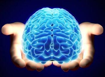 curso_meditación_gestalt_mindfulness_cerebro_emociones