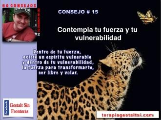 Consejo 15 fuerza y vulnerabilidad