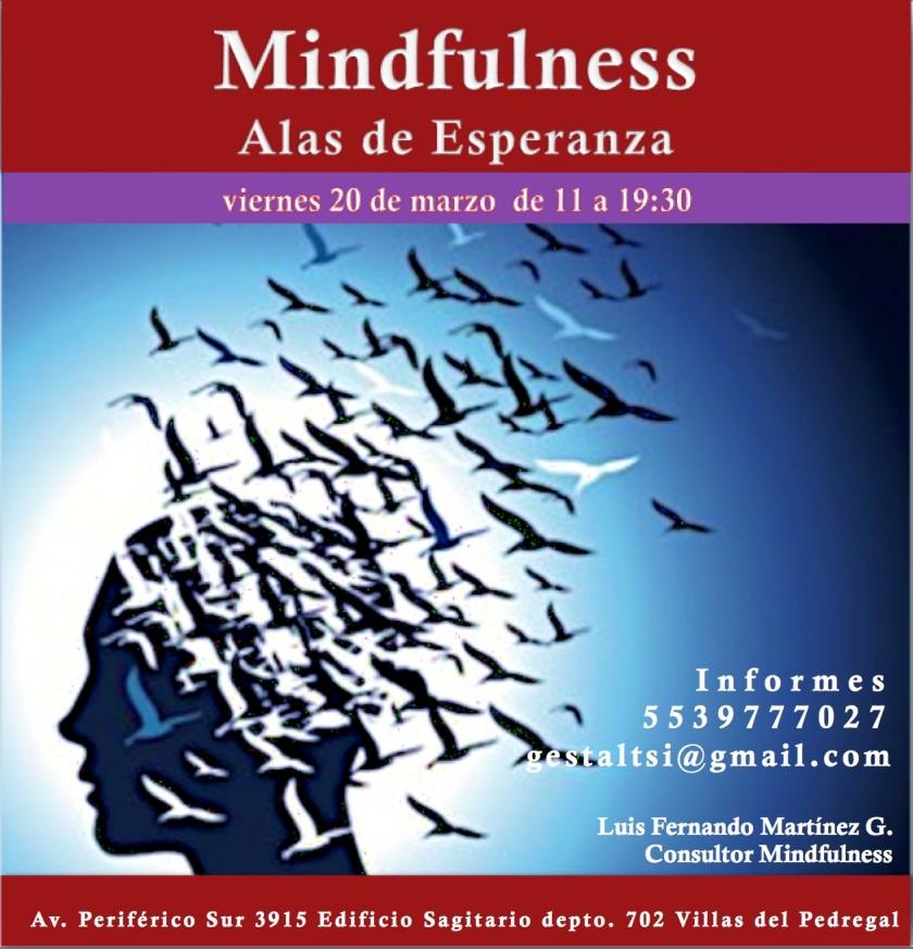 curso_mindfulness_ciudad_mexico_marzo_2015
