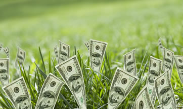 dinero-verde-dolares