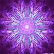 dinero_violeta