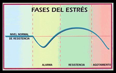 terapeuta_gestalt_luis_fernando_martínez_gómez
