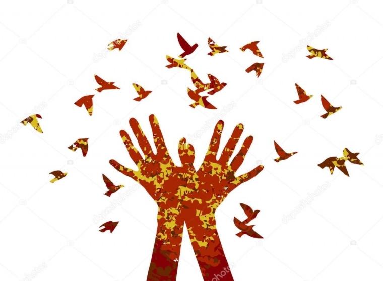 manos sueltan aves